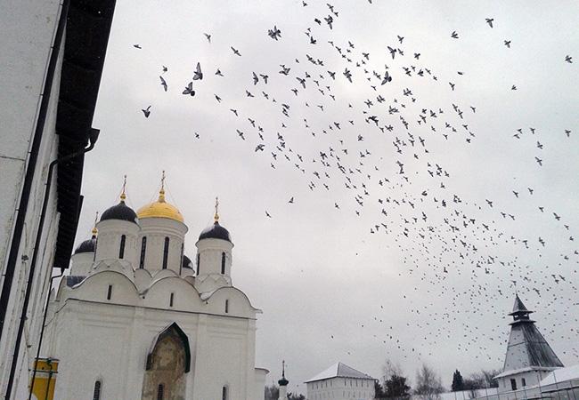 Паломническая поездка в Калужскую область